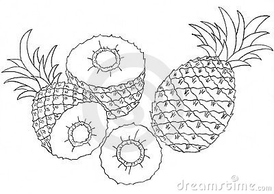 Pineapples sketch