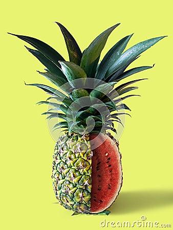 Free Pinemelon Stock Image - 1402541