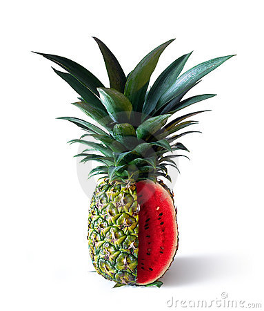 Pinemelon 2