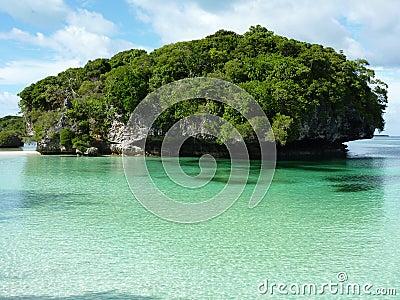Pines Island 2