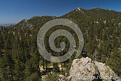 The Pines, San Jacinto