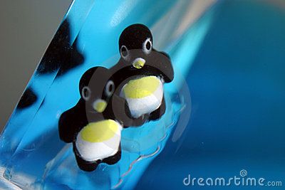 Pinguïn Antics