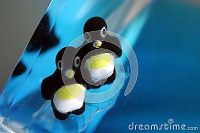 Pinguin-Mätzchen