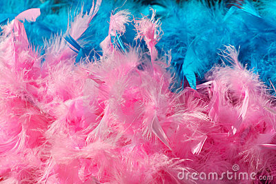 Pink blue feather boa