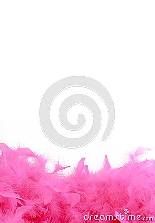 Pink boa border