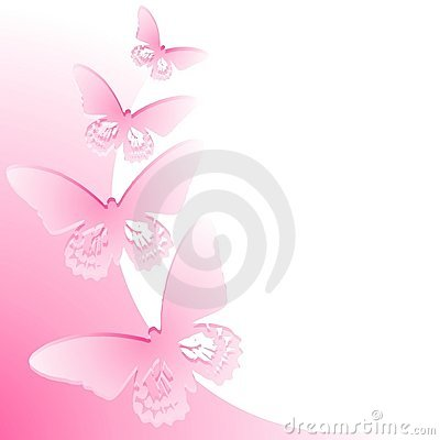 Pink Butterfly Border