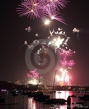 Fireworks pink butterflies over harbor scenery