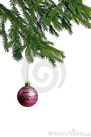 Pink christmas ball on fir tree