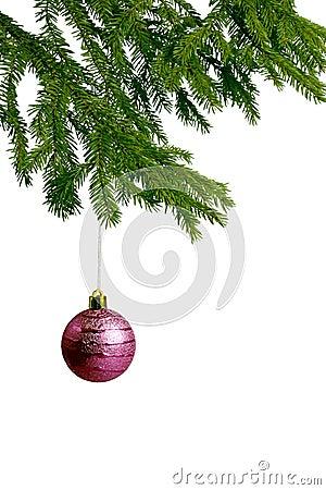 Pink christmas ball on fir tree