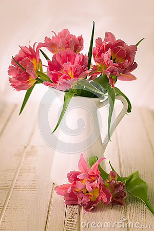 Free Pink Double Peony Tulip Royalty Free Stock Images - 52632919
