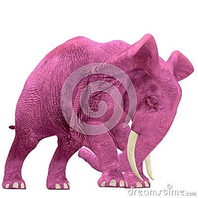 Pink Elephant - 04