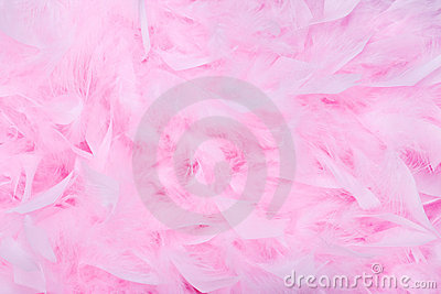 Pink feather boa background