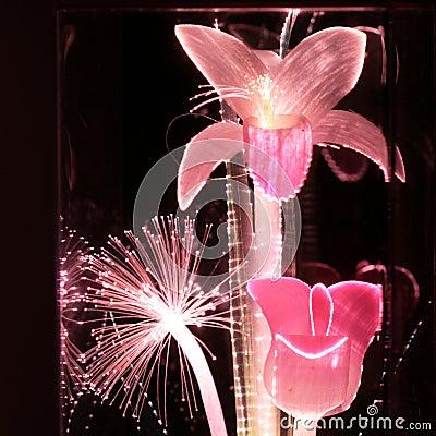 Pink Fiber Optic Flowers