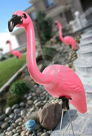 Free Pink Flamingo Stock Images - 1059314