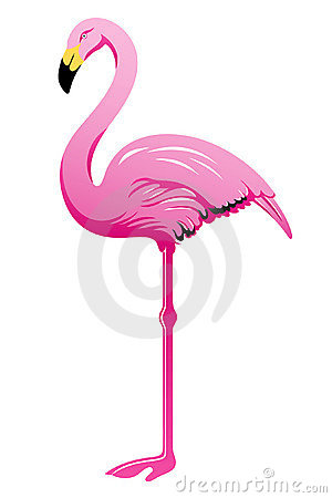 Free Pink Flamingo Stock Images - 16169544