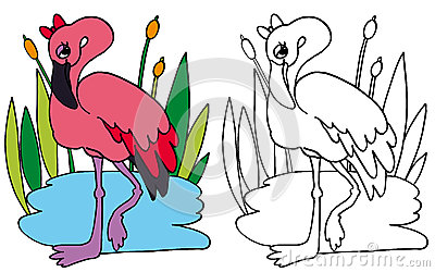 Pink Flamingo COLOR and BW