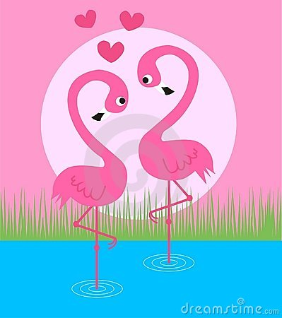 Pink couple