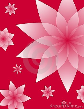 Pink Floral Designs on Red Background