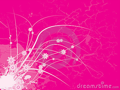 Pink floral girlie