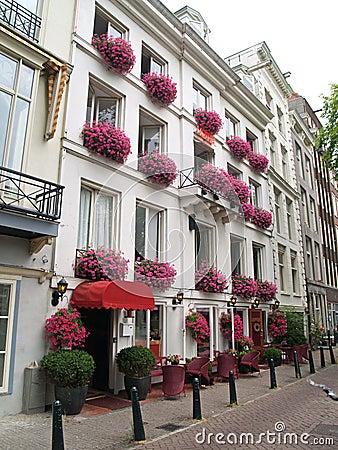 Pink flower facade Hotel