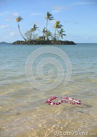 Pink flower garland floating