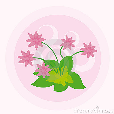 Pink flowers with circles