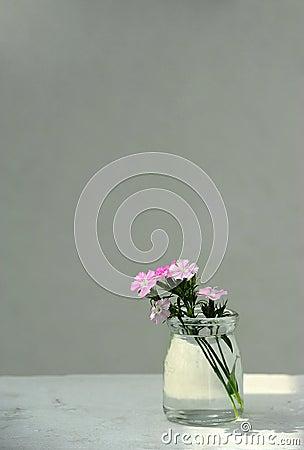 Pink flowers in a glass bottle