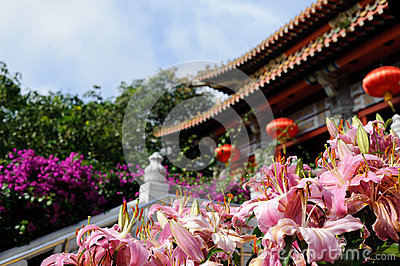 Pink flowers near buddhist temple