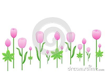 Pink Fresh flower