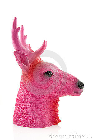 Pink head of a deer
