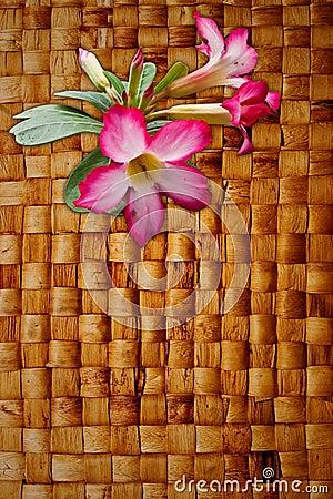 Pink Impala Lily on hyacinth hand weave