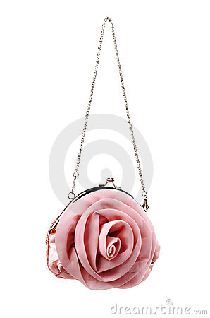 Free Pink Ladies Small Pouch Royalty Free Stock Photo - 19421135