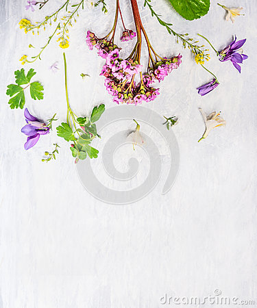 Free Pink, Lilac And Yellow Spring Or Summer Garden  Flowers And Plants On Light Wooden Background Stock Photo - 66188630