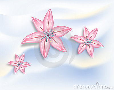 Pink Lilies with Clipping Paths