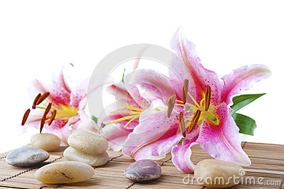 Pink lily and therapy stones