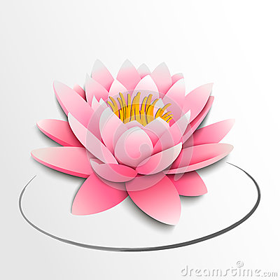 pink lotus flower. paper cutout royalty free stock photos  image, Beautiful flower
