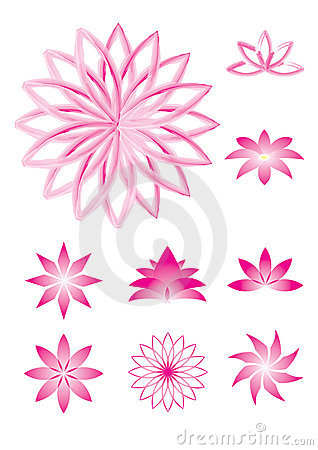 Pink lotus  illustrations