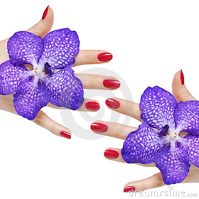 Free Pink Manicure And Orchids Royalty Free Stock Photos - 8507588