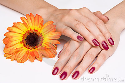 Pink manicure and orange flower