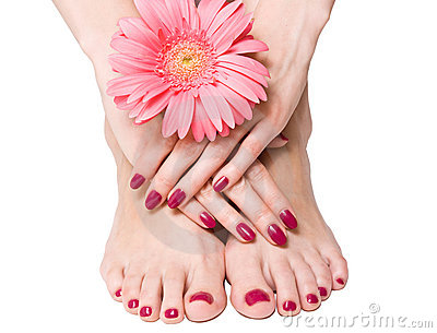Pink manicure, pedicure and flower