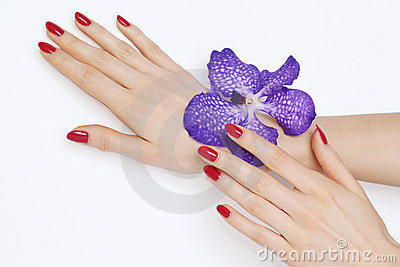 Pink manicure and purple orchid