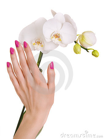 Pink manicure and white orchid