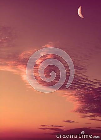 Pink Moon Sunset