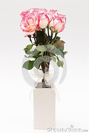 Pink nicole rose