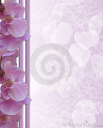Pink Orchids Floral Border wedding