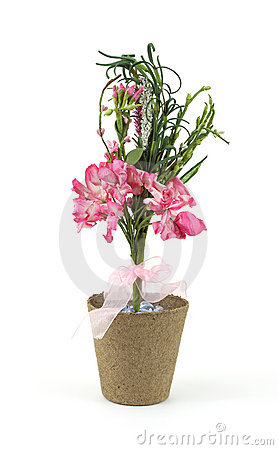 Free Pink Paper Flowers In A Peat Pot Stock Photography - 15200432