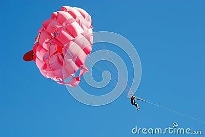 Pink parashute
