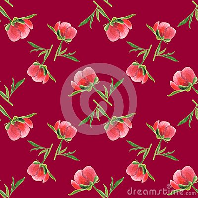 Free Pink Peony Bud On Vinous Background. Seamless Watercolor Pattern Stock Images - 102301594