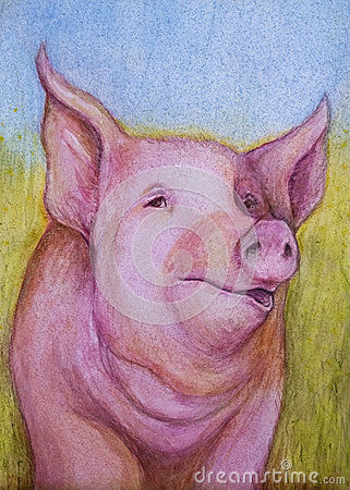 Free Pink Pig Color Sketch Royalty Free Stock Photos - 54152038