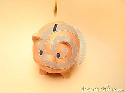 Pink piggy 2